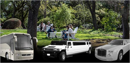 Napa Valley Wine Tour Limo Service Sausalito
