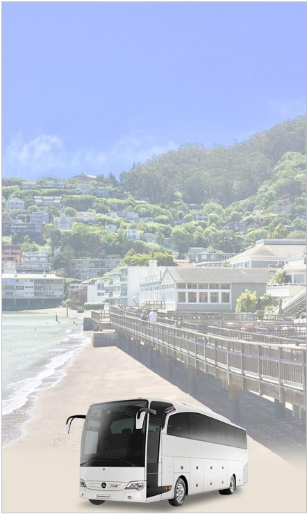 Sausalito Sightseeing And Tours