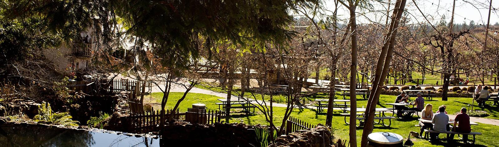 EL Dorado County Wineries Limo Service Sausalito